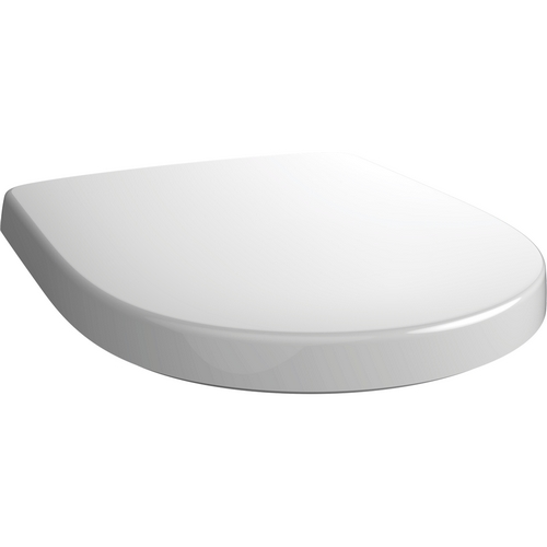 Stupendous Villeroy And Boch O Novo 9M396101 Toilet Seat With Lid White Squirreltailoven Fun Painted Chair Ideas Images Squirreltailovenorg
